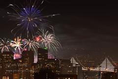 DSC_0967 (Zaric (picsbyzic)) Tags: sanfrancisco fireworks baybridge newyearseve newyears 2014