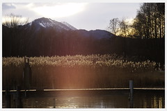 Last ray of sunshine (WanderingAlice) Tags: bridge sea sun mountain lake snow tree sunshine germany ray pentax chiemsee prien k5