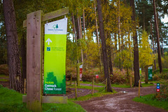 Birches Valley - Forestry Commission Signage (William Hook) Tags: park uk england orange mountain car bike shop forest giant suspension unitedkingdom five centre full cannock valley mtb chase staffordshire birches cycles midlands aonb rugeley swinnerton