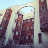 Sam photographer (سامر اللسل) Tags: me rose follow jeddah followme البحرين منصوري عمان تصويري جدة الباحه مصور الطائف فوتوغرافي الجنوب {flickrandroidapp}:{filter}=none {vision}:{outdoor}=093 {vision}:{text}=0623