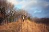Winter Grass (MrDaniel & MissLiva) Tags: winter england cold film girl scarf 35mm canon gloucestershire gloucester fujifilm canoneos500n haresfield haresfieldbeacon