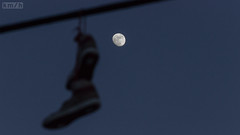 Moon Shoes (kmslashh) Tags: blue sky moon ontario canada night canon evening wire shoes telephone newmarket iso1600 150mm