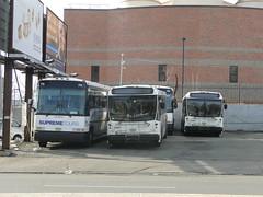DSC05462 (GojiMet86) Tags: street bus buses john broadway terminal 63 jfk 711 700 tours kennedy blvd bayonne supreme association fitzgerald njt owners 63rd iboa 2013 6489 6497 40sfw
