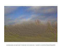 LANDSCAPEINMOTION2015-004 (Edwin Loyola) Tags: winter abstract nature landscape seasons icm intentionalcameramovement landscapeinmotion edwinsloyola edwinloyola edwinsloyolaphotography