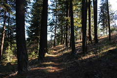 The end of a great hike (rozoneill) Tags: green monument oregon forest river pacific hiking crest trail national springs summit pct rogue siskiyou cascade ashland medford wsweekly76