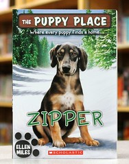 Zipper (Vernon Barford School Library) Tags: new school fiction rescue dog pet pets dogs animal animals puppy reading book ellen high puppies place library libraries reads places books read paperback cover animalrescue junior zipper novel series covers miles bookcover pick middle shelter vernon quick recent picks bookcovers paperbacks shelters novels fictional animalshelter barford rescues softcover animalshelters quickpicks quickpick animalrescues vernonbarford 9780545603812