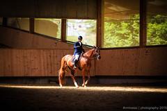 [Chlet--Gobet] Concours 28.06.2015-86 (#vmivelaz) Tags: horse sport canon cheval schweiz switzerland europe suisse l 5d equine lightroom vaud 200mm dressage equitation canoneos5dmarkiii manegechaletagobet vmivelaz