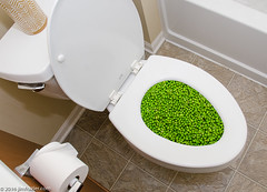 Go in Peas (Jim Frazier) Tags: 2016 elgin bathroom caption closet december edgewater flash home humor il illinois interior jimfraziercom joke kane peas peasproject pun restroom toilet water winter f10