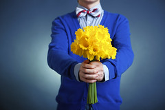 bouquet of flowers (gracipher) Tags: birthday blue man black flower love nature smart closeup shirt thanks landscape hand anniversary joy hipster bowtie retro celebration gift surprise present romantic bouquet concept date gesture gratitude greeting cardigan daffodils valentinesday stylish