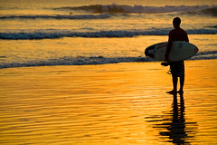 ZUP-749116 (SalvadoriArte) Tags: sunset sea people beach water silhouette sport yellow horizontal standing indonesia asia southeastasia lowtide sopa kuta warmlight sime baliisland southpacificocean brozzi outdoorexterior surfsurfingsurfer reflectreflection watersportwatersport oneoneperson watersedgeshore