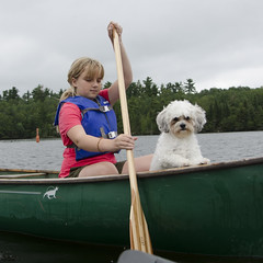 laker12349.jpg (keithlevit) Tags: sky dog pets lake ontario canada tourism water puppy outdoors boat day sitting child tourist transportation boating rowing oar tween lookingdown vacations enjoyment lifejacket kenora lakeofthewoods oneperson frontview traveldestinations leisureactivity keewatin zuchon onegirlonly squareimage preadolescentchild