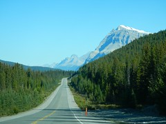 Route to Glacier Lake Hike via Icefields Parkway (benlarhome) Tags: canada nature trekking trek nationalpark hiking path hike trail alberta banff northsaskatchewanriver icefieldsparkway glacierlake