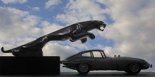 Jaguar vs Jaguar