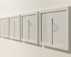 Galería Nuble. Premio Paco Guillén