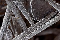 Natural angles of ice (Olli_Pihlajamaa) Tags: abstract ice finland fi j uusimaa kirkkonummi sigma150mmf28exdghsmapomacro