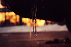 i c e  c o l d ([ andi ]) Tags: winter sunset shadow sky orange snow cold ice car night canon cool focus dof bokeh depthoffield icicle icicles canonrebelxs