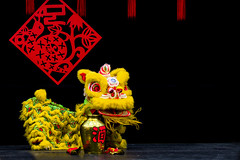 Edmonton Chinese New Year 2013