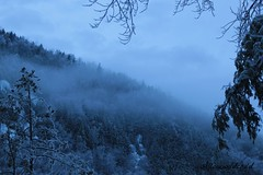 it's coming are you ready (allonewildchild) Tags: life blue trees winter snow love ice nature fog hillside allonewildchild