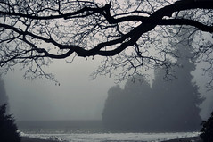 misty day (Eggii) Tags: park morning mist fog time lodz lazymorning awalkthroughthepark poniatowskipark timeforthesilence