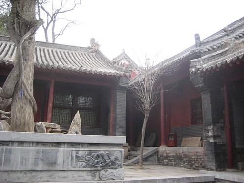 zhenshou 203