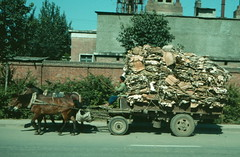 Beijing - Horse drawn rubbish cart 1987 (Bruce in Beijing) Tags: china technology 1987 transport beijing recycling horsecarts