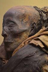 Mummified Man (Eva O'Brien) Tags: chicago museum ancient egypt naturalhistory fieldmuseum egyptian mummy ancientegypt mummification vision:mountain=0643 vision:outdoor=0865 vision:sky=0661 evacares evaobrien