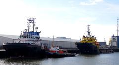 ERACLEA , NAPIA & AGAT (kees torn) Tags: offshore tugs ahts napia lekhaven