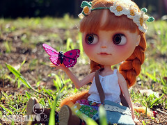 Take a moment to enjoy the sunshine (china-lilly *no FMs*) Tags: butterfly hope doll blythe neo custom takara lele rbl chinalilly chuthings