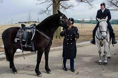 DSC_0454 (2) (KLMP) Tags: old horses cemetery infantry arlington last us 3d ride fort national karin myer platoon mayberry regiment markert ciasson