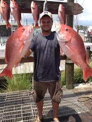 Reef Fishing for Red Snapper (saltydogfishingcharters) Tags: