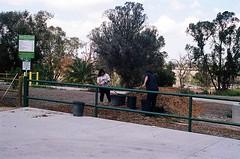 01750025-84 (jjldickinson) Tags: olympusom1 fujicolorsuperiaxtra400 roll495o2 tokinasd35200mmf456 tiffen62mmsky1a longviewpoint willowspringspark compost sky tree longbeach