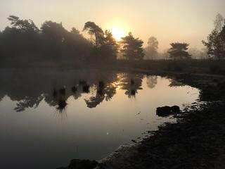 misty morning 5