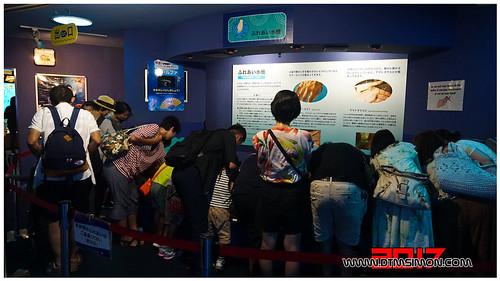 品川水族館47.jpg