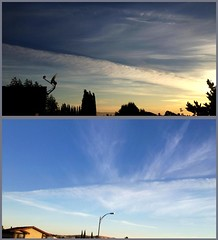 Aged Chemtrails/Pseudo Cirrus Above San Jose, CA (5-20-13) Photo #2 (54StorminWillyGJ54) Tags: california sky weather clouds skyscape spring skies atmosphere skyscapes westcoast mothernature meteorology greatoutdoors may2013 spring2013