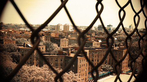 Queensbridge Houses