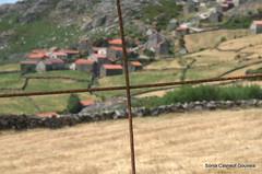 Atrs do arame farpado 1 (Snia Casneuf Gouveia) Tags: arame farpado