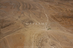 Shara Ruin 26 (APAAME) Tags: aerialarchaeology aerialphotography middleeast airphoto archaeology ancienthistory