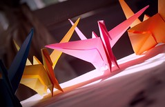 12/365 What is a bird without its wings (heroinxe) Tags: pink blue orange birds yellow fly wings origami colorful flight away colourful runaway taking runway