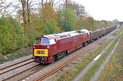 D1015 at Great Bowden (robmcrorie) Tags: modern train diesel main great champion rail railway loco trains class line western british locomotive enthusiast railways railfan freight midland mountsorrel 52 midlands wellingborough d1015 bowden mml gbrf 6d02