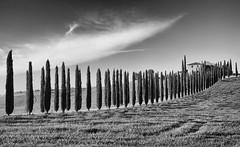 quel lungo tacere... (* onda *) Tags: italy silence serenity tuscany valdorcia creativemindsphotography inspiringcreativeminds