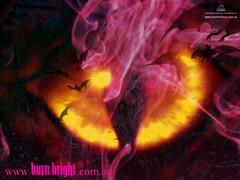 burnbright_standard_wpaper_v4