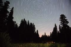 Sierra Nevada star-trail (lenswrangler) Tags: sky night stars sierra rotation nightsky sierranevada pinecrest polaris northstar startrail lairofthebear