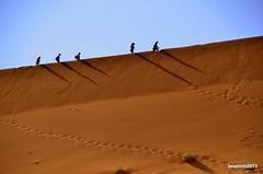 Le Dune lineari (Liv ) Tags: africa park nikon desert southern national namibia sossusvlei namib deadvlei 2013 laivphoto qualitygroup ildiamante nauklutf