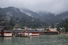 Rainy Itsukushima Shrine at high tide the next morning (Ehren Mannebach) Tags: japan hiroshima miyajima  itsukushima rainyjapan rainmiyajima