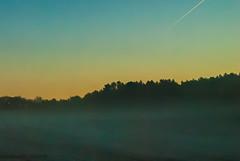 Matin brumeux (lausend) Tags: autumn mist color tree field automne landscape arbol photography photo nikon colore foto photographie nebel image herbst picture feld paisaje campo fotografia bild paysage nebbia albero landschaft autunno farbe arbre niebla baum couleur imagen paesaggio champ brume otono immagine d80 gandrille lausend