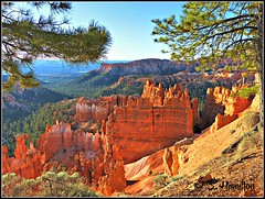 Sunrise, Bryce Canyon (Suzanham) Tags: nature landscape brycecanyon thegalaxy fantasticnature flickraward panasonicfz150