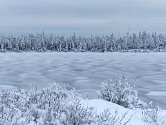 Partially Frozen Lake (nikagnew) Tags: trees winter white snow novascotia kidstonlake kidstonpark spryfieldns