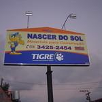 DSC01617