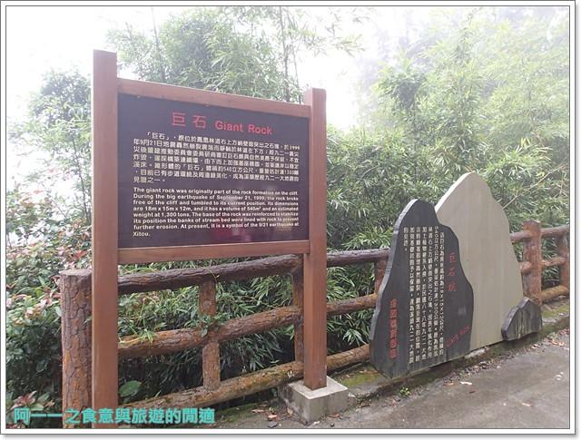 南投溪頭自然教育園區台大image083