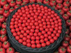 Circle of tomatoes (shaggy359) Tags: show red flower london fruits vegetables leaves fruit tomato circle leaf chelsea basket tomatoes grand vegetable round pavilion veg tomatos arrangement stalk rhs 2014 arrange